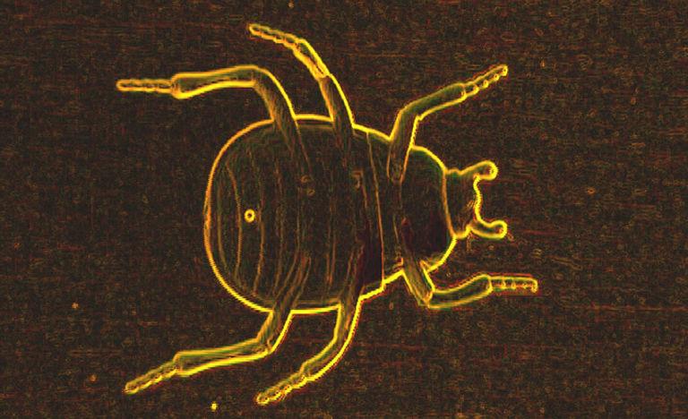 Shmetamorphosis