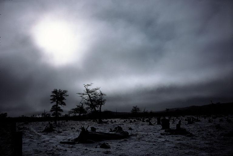 Soledad al fin del mundo