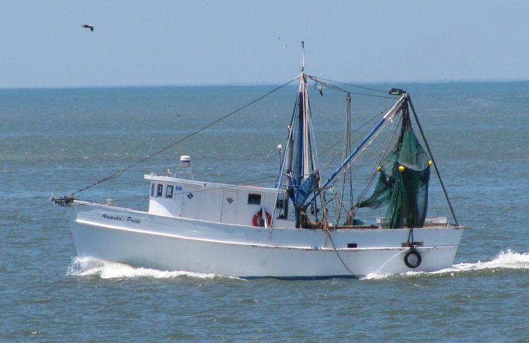 Shrimp Boat Log