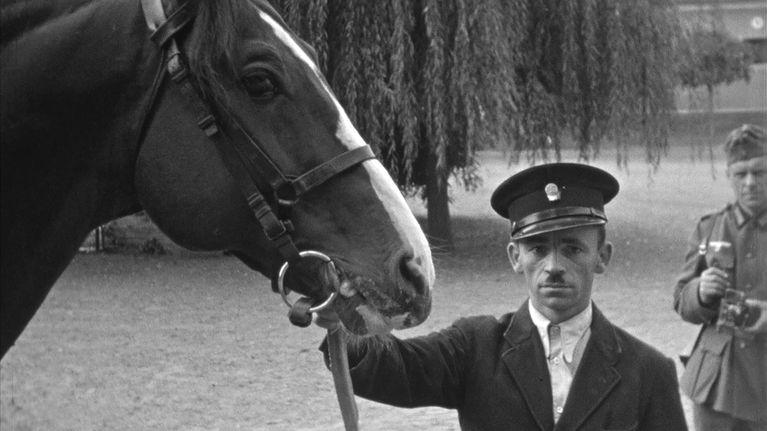 Die Pferde des Rittmeisters