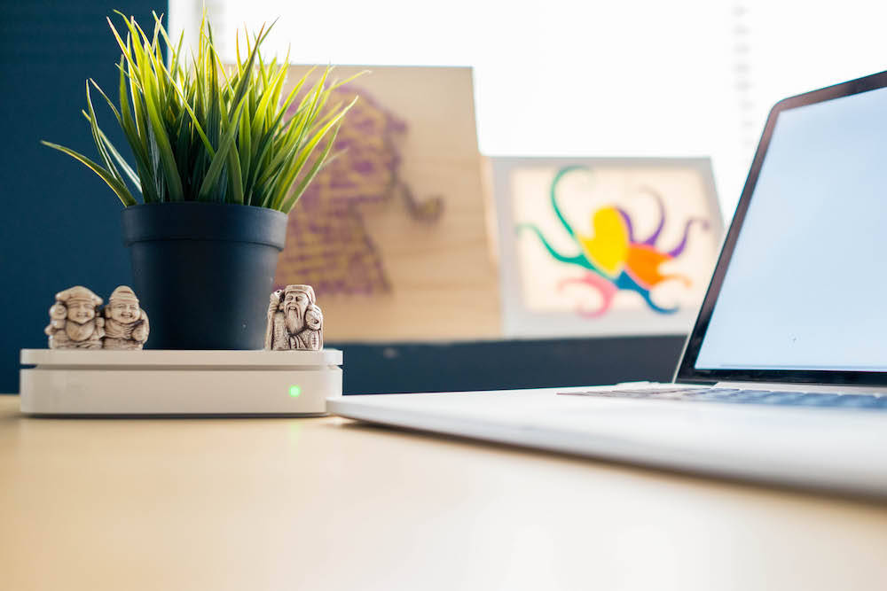 a plant with little buddha statues on a desk with artwork