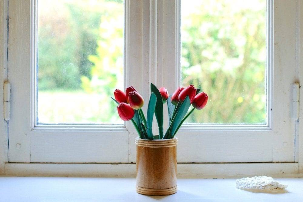 recipe for a staycation - tulips sitting on a window sill