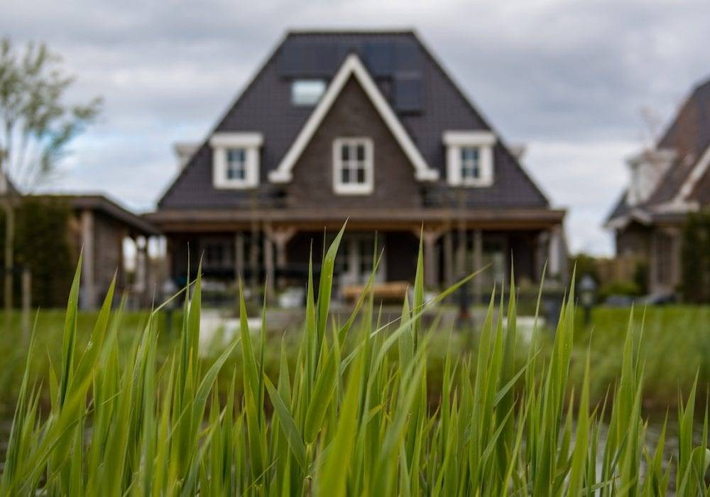 Website Homepage Best Practices - a house with a grassy lawn