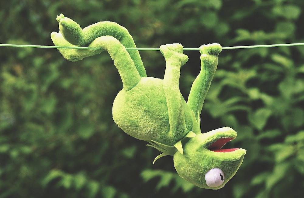 What Does Eat the Frog Mean? kermit the frog hanging onto a wire upside