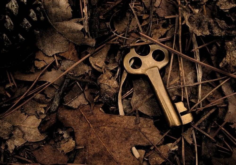 How to Generate More Leads From Your Website: a golden key buried in the leaves