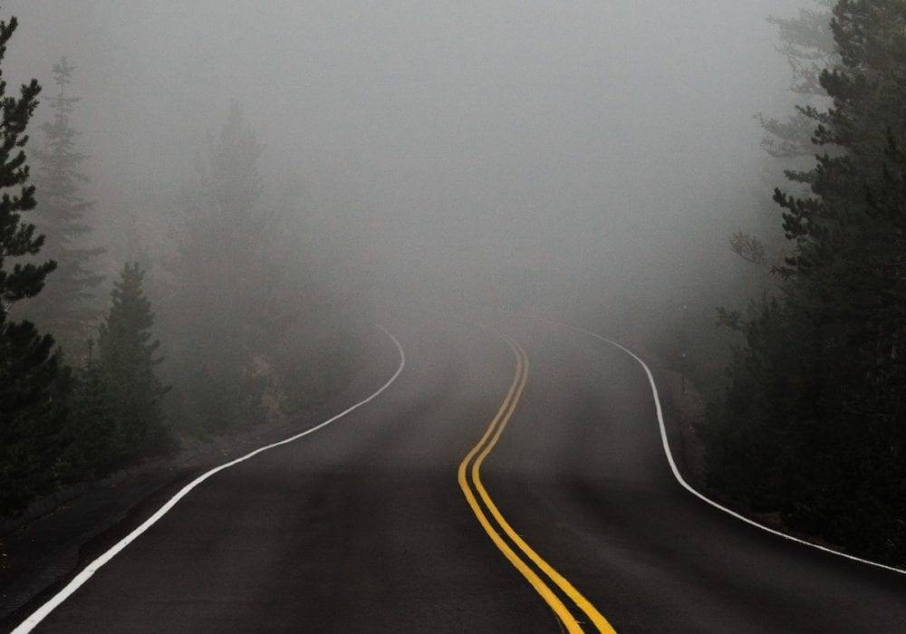 Dealing with Uncertainty: a road in the woods leading into the fog