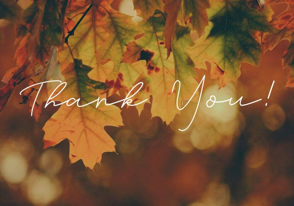 Cultivating Gratitude: Thank You! on a background of fall autumnal leaves