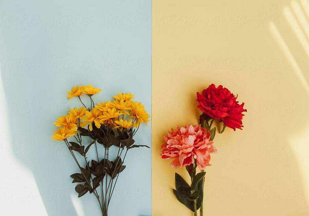 website makeover: two contrasting bouquets of flowers on two different colored backgrounds