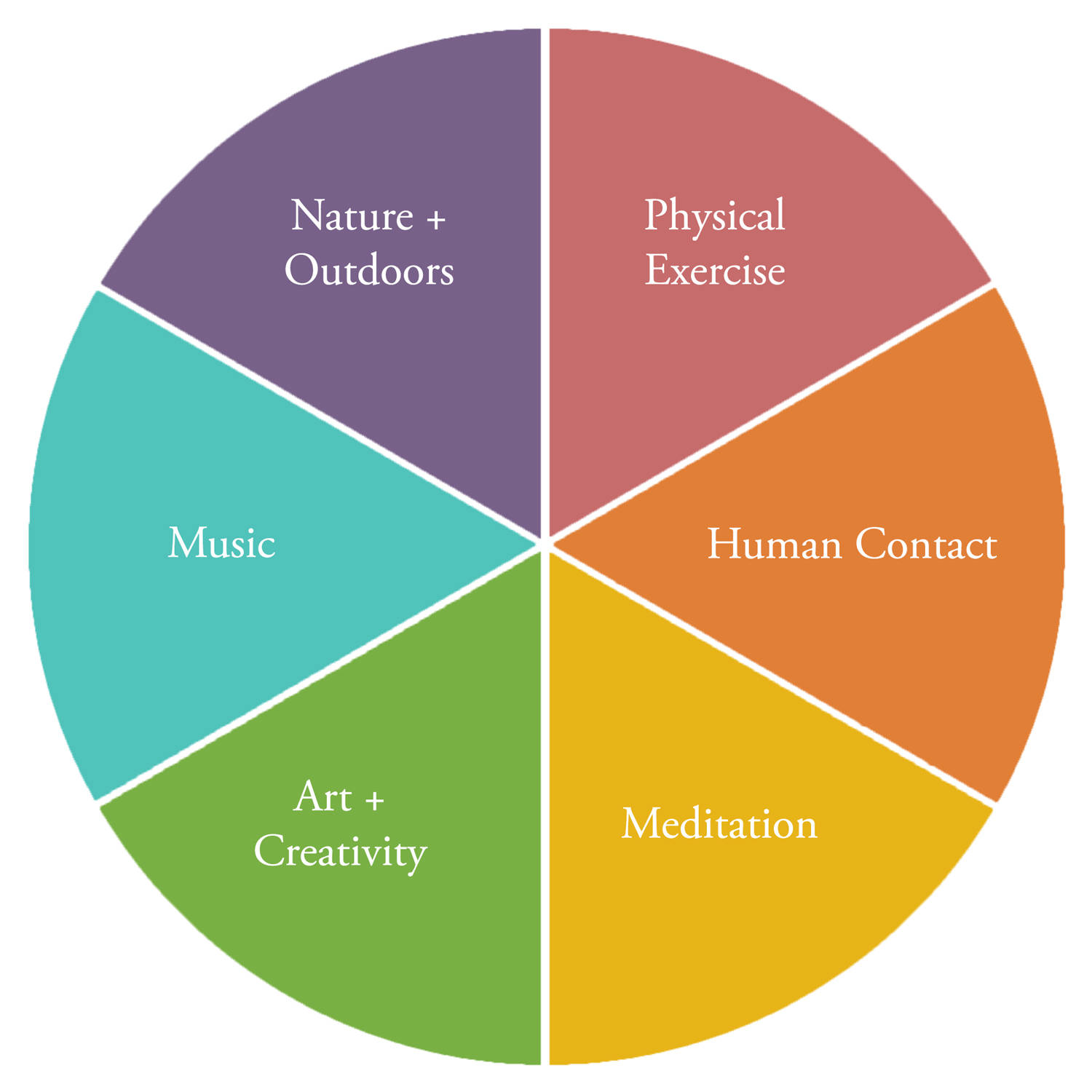 a colorful pie chart with six equal slices: meditation, outdoors, physical exercise, people / relationships, music, art
