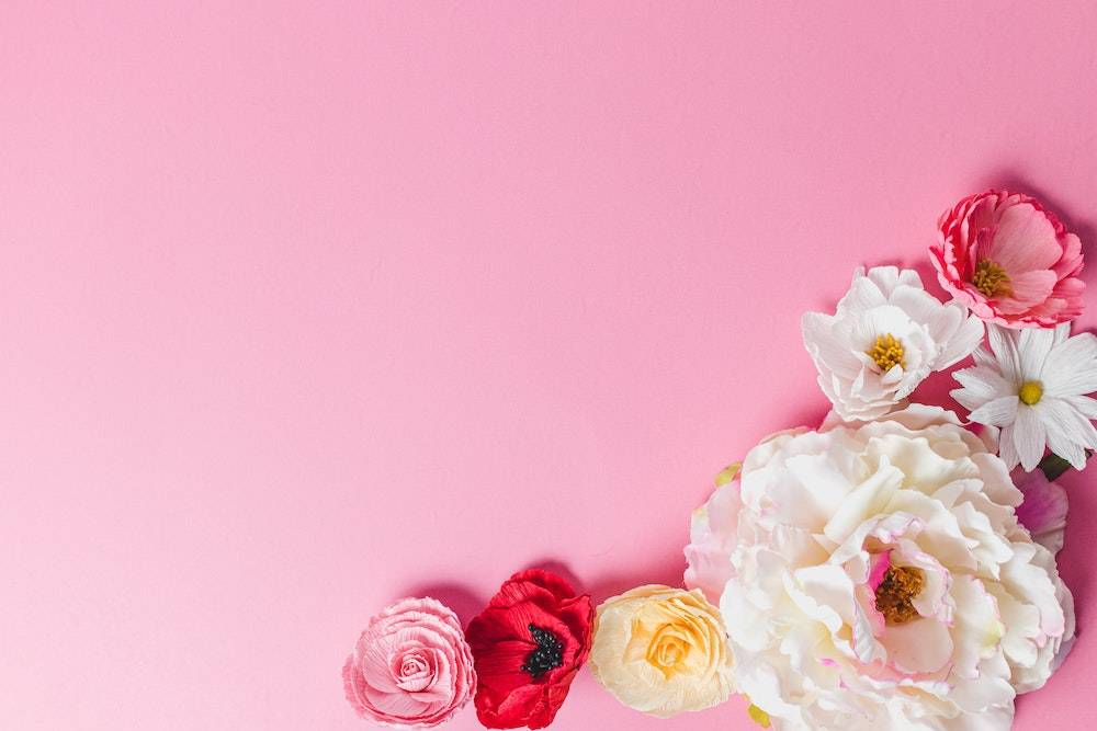 pink background with flowers