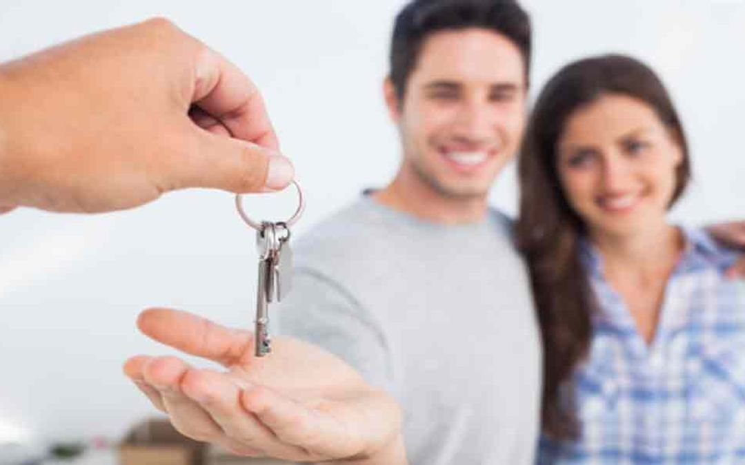 The Basics of Working with Estate Agents
