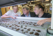 LAB VISIT: Roger Williams University President Ioannis Miaoulis visits with Emma Place, left, and Alicia Schickle, who are examining the Northern Star Coral being raised in the university's wet lab. / PBN PHOTO/MICHAEL SALERNO