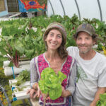 RETURN TO ROOTS: Katherine Fotiades and Mark Phillips own and operate Skydog Farm, a farm store and hydroponic nursery in Scituate that grows herbs and leafy greens. / PBN PHOTO/MICHAEL SALERNO