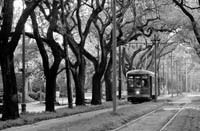Photo Courtesy www.Neworleansonline.com<br><br> <b>A streetcar</b> goes down Charles Street in New Orleans, one of the spots where Collette Vacations is taking a tour group this month.