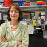 INSTITUTIONAL EXCELLENCE: Denice Spero, research professor and co-director of URI's iCubed, was recognized as the Industry Leader in the Technical Services category of the 2011 Business Women awards program. / PBN FILE PHOTO/FRANK MULLIN