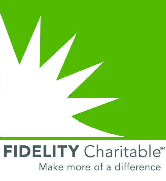 FIDELITY CHARITABLE has announced that it has surpassed $1 billion in grants to charities for the year, the independent public charity reported Tuesday.