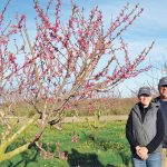 supporting others: Young Family Farm co-owners Karla and Tyler Young. / COURTESY YOUNG FAMILY FARM