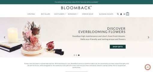 bloomback