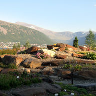 Tromsø arktisk alpine botanisk hage