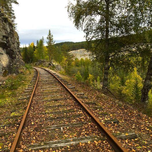 Dresinsykling på Numedalsbanen