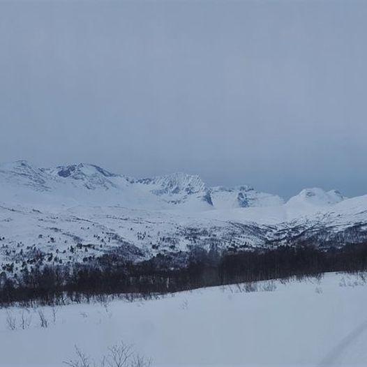 Storli - Halsbekkdalen