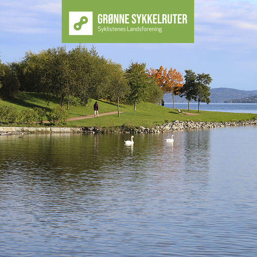 Grønne sykkelruter: elvelangs fra Drammen stasjon til Fjordparken