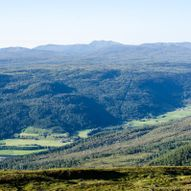 Fra Surnadal via Setersetra til Vindølbu
