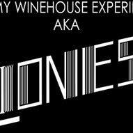 The Amy Winehouse Experience: Lioness