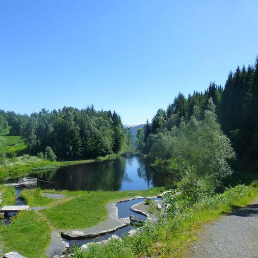Baggehola - Ulvejølet - Botanisk hage