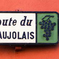 Vinsmaking: Beaujolais