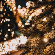 Julemarked i Henningsvær, Lofoten