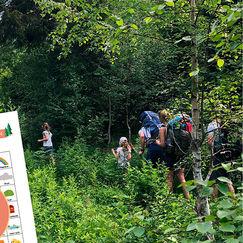Utforsk naturen – last ned gratis turbingo
