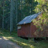 Skogstur fra Lunderåsen til Farshatten, Kopperudlia og Størsrudfjellet