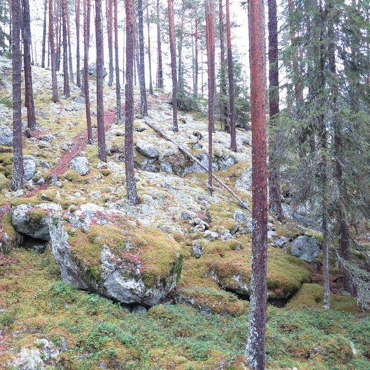 Topptur til Nedrenatten i Liagardane, Gol