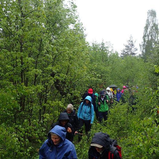 Kvite Kyrkjer Pilegrimsvandring etappe 2 Hovin - Austbygde
