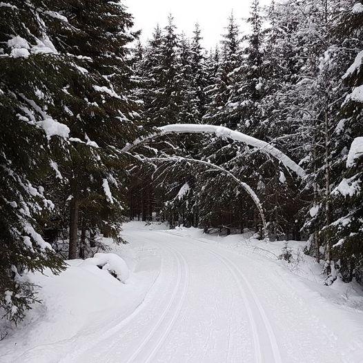 Skitur rundt Hollitjern, Rudstjern og Langmåsan