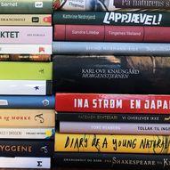 Litt LitFest: Kva er ein roman?