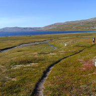 Bleiknesmo (Saltdal) til Bjellåvasstua