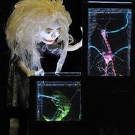 The Immortal Jellyfish Girl // Wakka Wakka