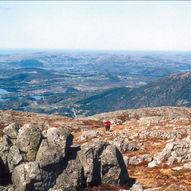 Lammanuten (631 moh.)