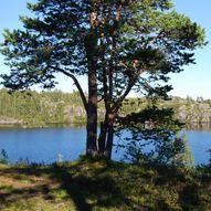 Kanotur i Bymarka - 11 km på vann