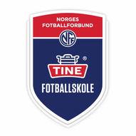 Tine Fotballskole Valder 2021