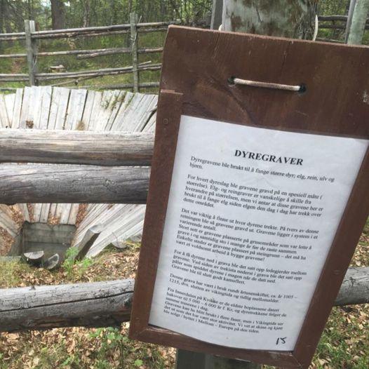 Mjølkesyra - Naturstien i Tjønnhauan