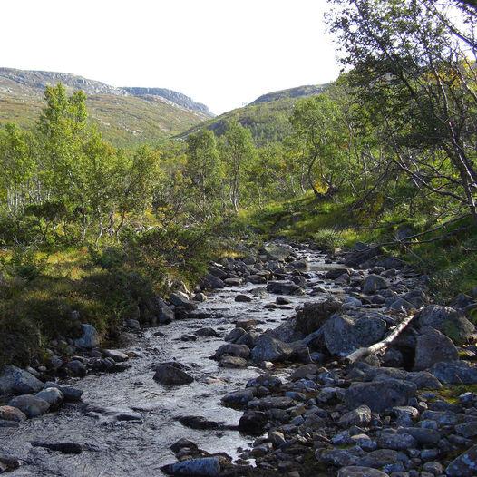 Sæbyggjenuten - Sørlandets høyeste punkt