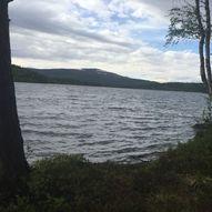 Mjølkesyra - Tallsjøen