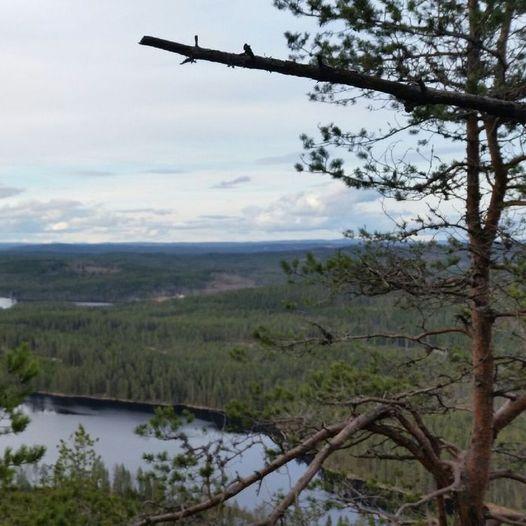 Nyfjelltramp-stien