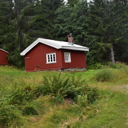 Tur fra Høidalen til Haugen i Tørdal