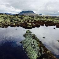 3 dagers i Alvdal Vestfjell