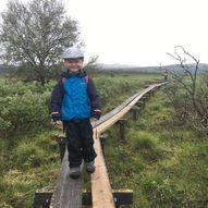 Korttur til fugletårnet i Fokstumyra naturreservat i Dovre