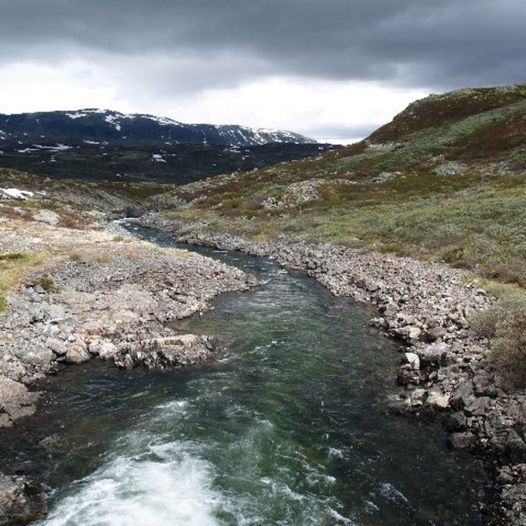 Fanitullvegen - Fra Hemsedal til Ål på sykkel